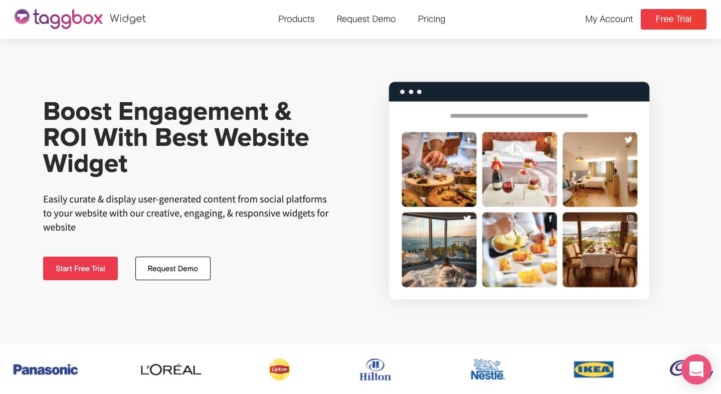 social media feed on website example