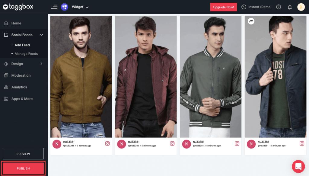 Embed Instagram Stories on Shopify website